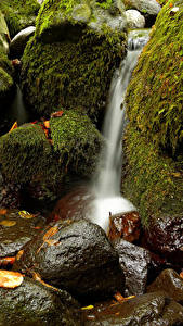 Фотографии Водопады Камень Мох
