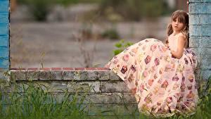 Картинка Девочки Сидящие Платья Шатенка Дети