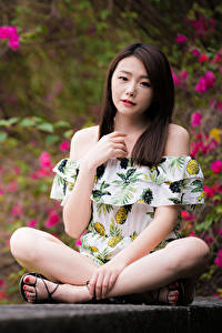 Фотография Азиатки Боке Сидит Поза Ног Шатенка девушка