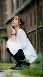 Фотографии Азиатки Боке Сидящие Шатенки Миленькие девушка