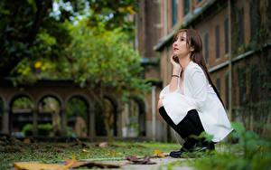 Фотографии Азиатки Боке Сидящие Шатенки Миленькие