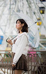 Обои Азиатки Боке Юбки Зонтом Шатенки девушка