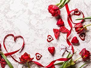 Фотографии День всех влюблённых Сердечко Ленточка Бантики цветок