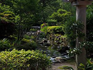 Картинка Япония Парки Пруд Камни Кусты Деревья Kanazawa Природа