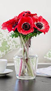 Картинки Натюрморт Букет Анемоны Чашка Розовый цветок