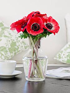 Картинки Натюрморт Букеты Анемоны Чашка Розовый Цветы