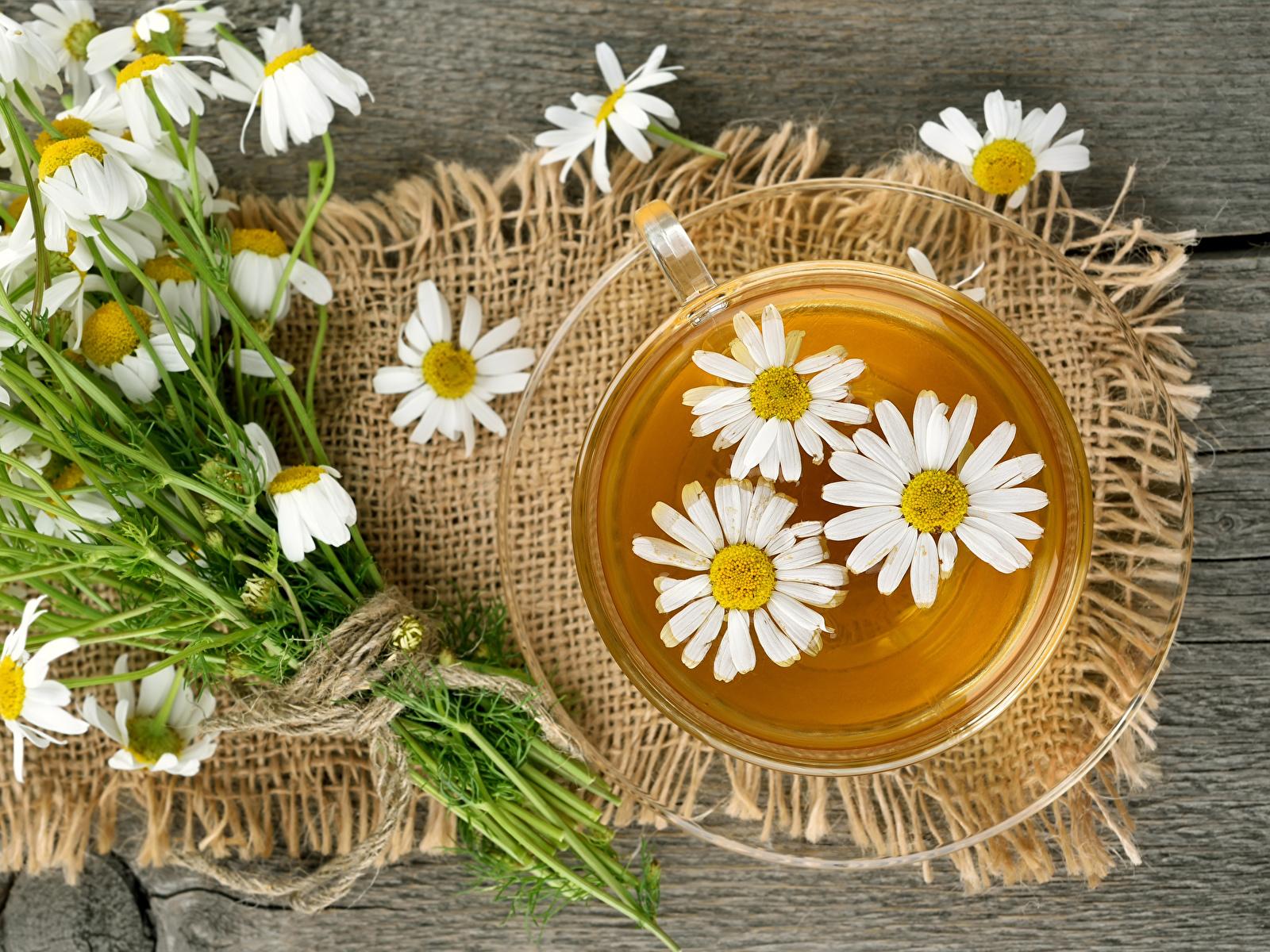 Фотография Чай Ромашки чашке Продукты питания 1600x1200 ромашка Еда Пища Чашка