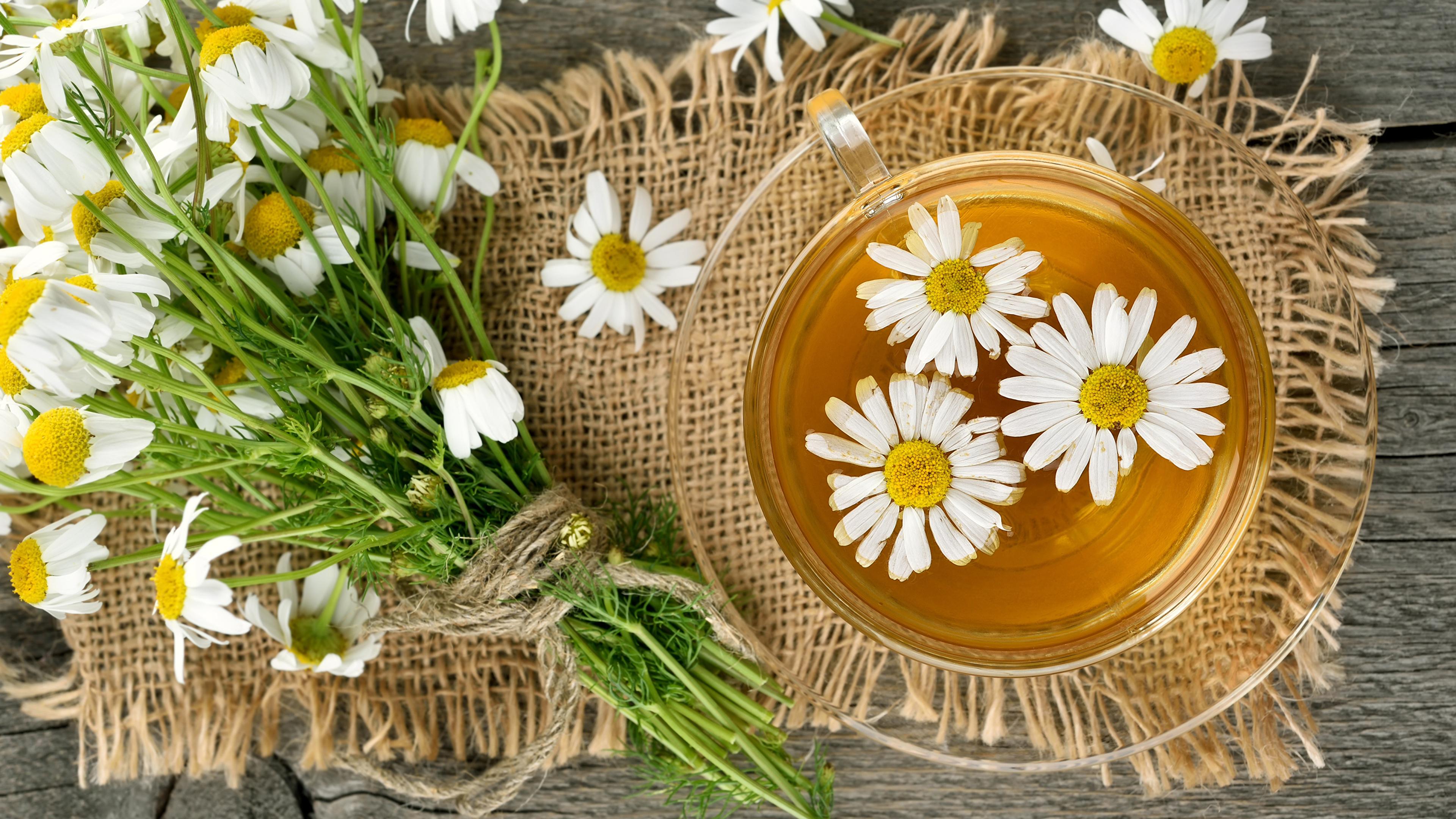 Фотография Чай Ромашки чашке Продукты питания 3840x2160 ромашка Еда Пища Чашка