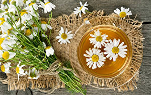 Фотография Чай Ромашки Чашка Продукты питания