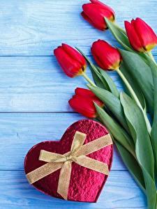 Фотография День всех влюблённых Тюльпаны Бантик Доски Сердца Цветы