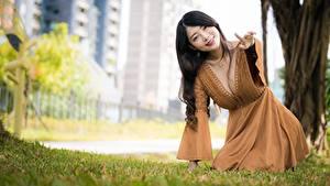 Фотография Азиаты Боке Поза Платье Декольте Шатенка молодые женщины