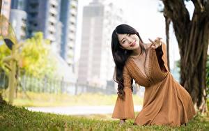 Фотография Азиатки Боке Позирует Платья Вырез на платье Шатенки