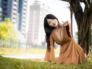 Фотография Азиатки Боке Позирует Платья Вырез на платье Шатенки девушка