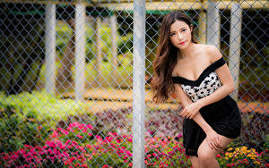 Фото Азиатки Поза Забором Взгляд Шатенки девушка
