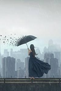 Фотография Птицы Дождь Дома Зонт Платье Фантастика Девушки