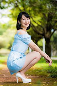 Фото Азиаты Размытый фон Поза Сидя Платье Улыбка Шатенка молодые женщины