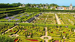 Фотографии Франция Сады Дизайна Кусты Chateau de Villandry gardens Природа