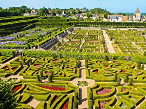 Фотографии Франция Сады Дизайна Кустов Chateau de Villandry gardens Природа