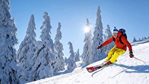 Картинки Зимние Лыжный спорт Мужчины Снег Скорость Спорт