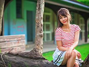 Фотография Азиатки Сидящие Шатенки Футболка Красивая молодые женщины