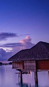 Фотография Французская Полинезия Тропики Море Вечер Небо Рассветы и закаты Бора-Бора Бунгало