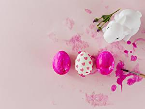 Фотография Пасха Кролики Цветной фон Яйцо Втроем Серце