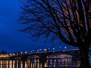 Обои Германия Реки Мосты Майнц Деревья Ночь Силуэт Города