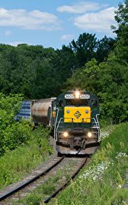 Картинки Штаты Поезда Железные дороги Леса Локомотив Massachusetts Природа