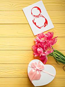 Фотография Праздники Международный женский день Тюльпаны Доски Подарков Бантик цветок