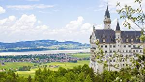 Фотография Нойшванштайн Германия Замки Лето Ветка