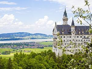 Фотография Нойшванштайн Германия Замки Лето Ветка город