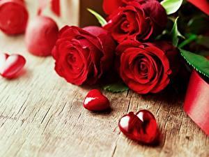 Фото Розы День святого Валентина Красный Сердечко Цветы