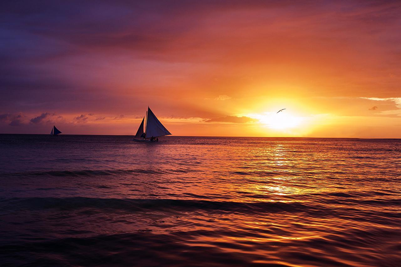 Картинка Море Природа Небо Рассветы и закаты Парусные горизонта рассвет и закат Горизонт