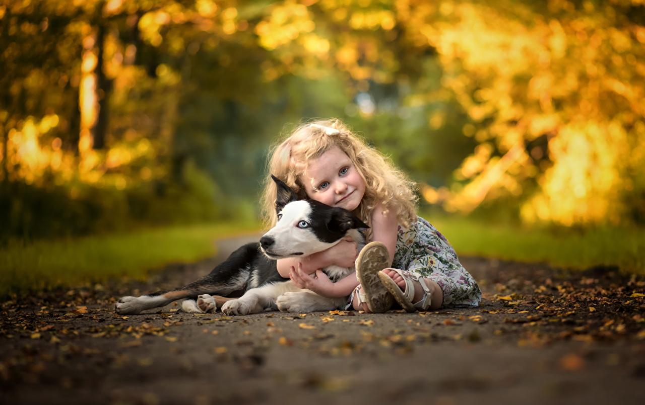 Фото Девочки собака Дети обнимаются