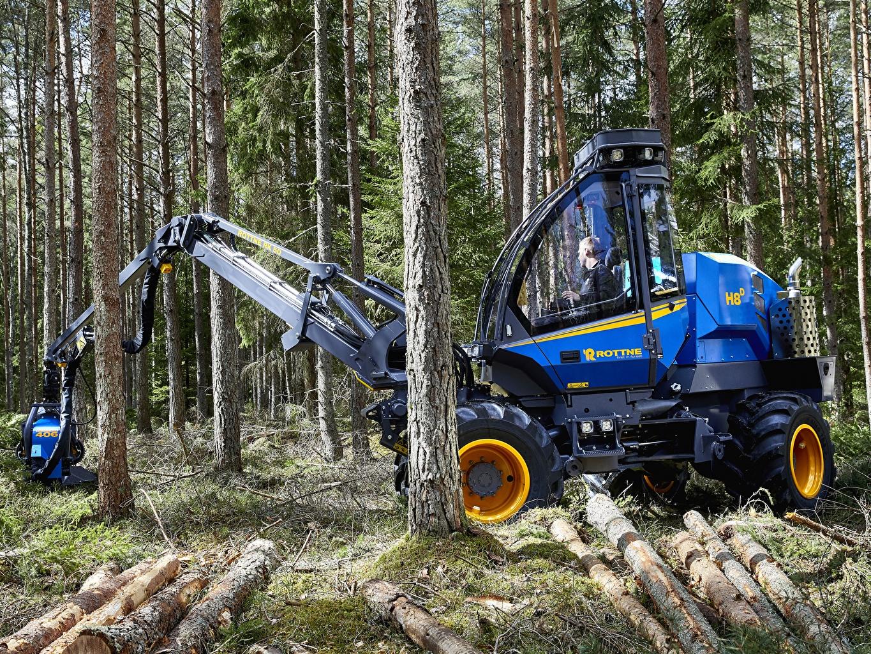 Фотографии 2017-18 Rottne H8D Harvester Бревна лес бревно Леса