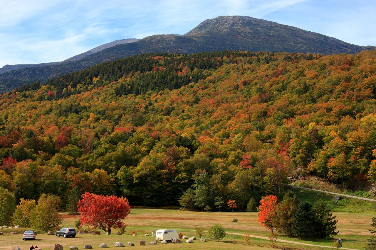 Картинка Осень Природа лес холм дерева осенние Леса Холмы холмов дерево Деревья деревьев