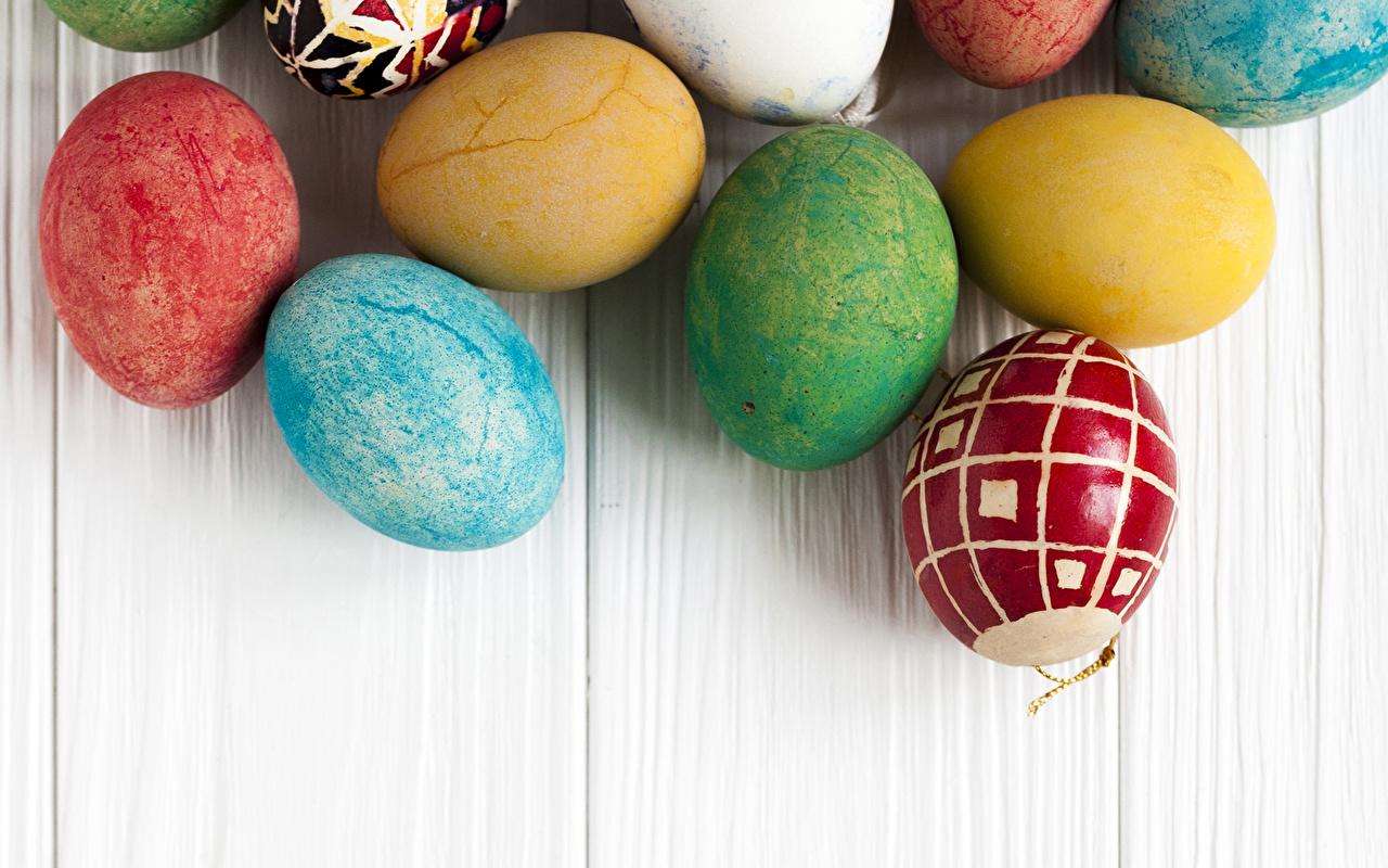 Фотографии Пасха Разноцветные яйцами Доски яиц Яйца яйцо