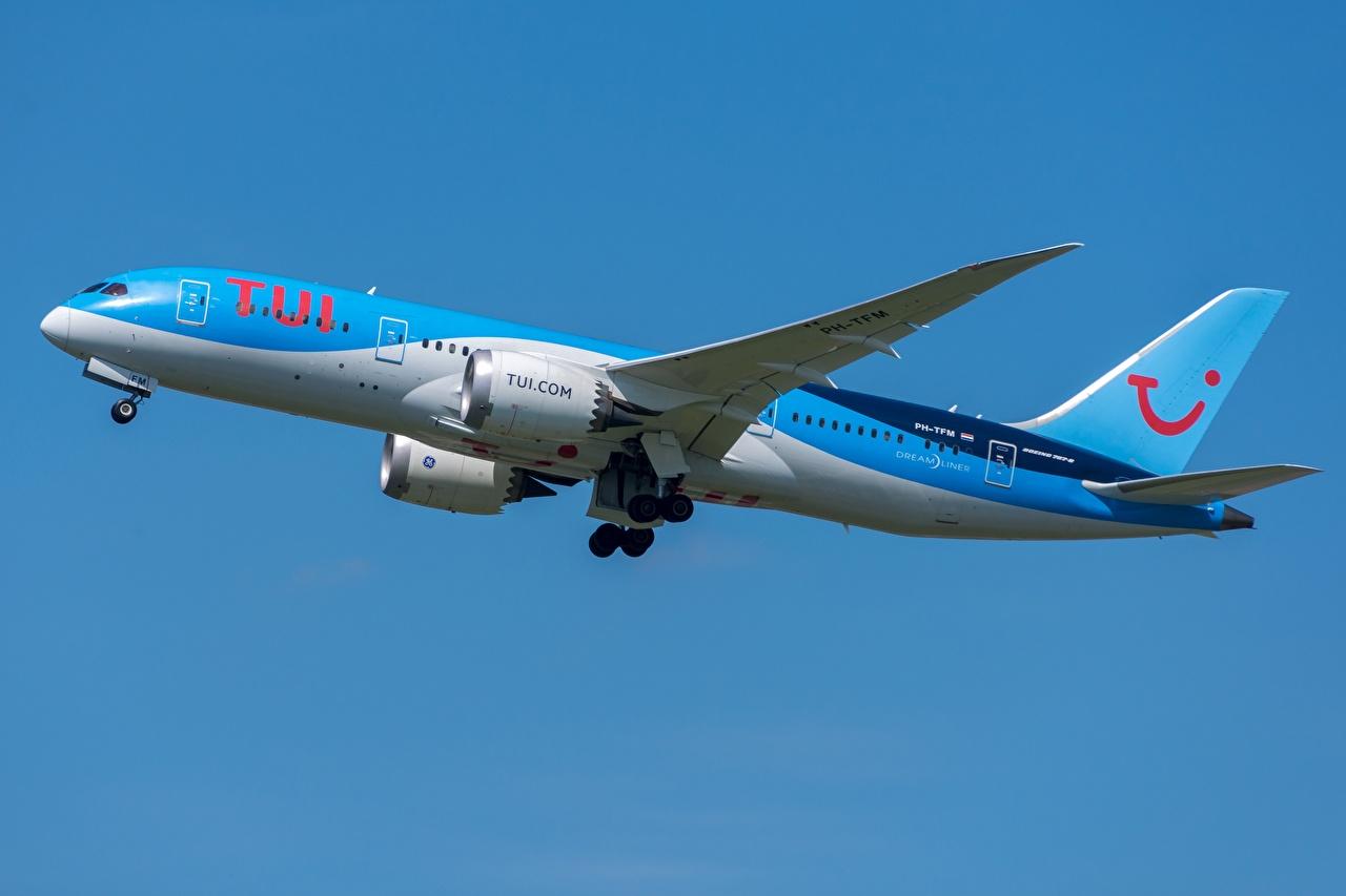 Картинки Боинг Пассажирские Самолеты TUI Airlines 787-8 Сбоку Авиация Boeing