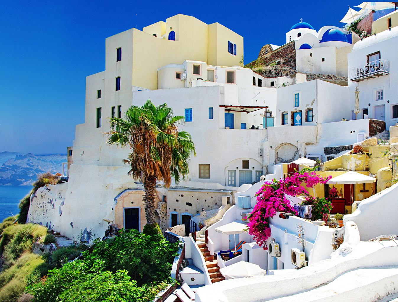 Обои для рабочего стола Фира Греция Пальмы Дома Города Тира Санторини пальм пальма город Здания