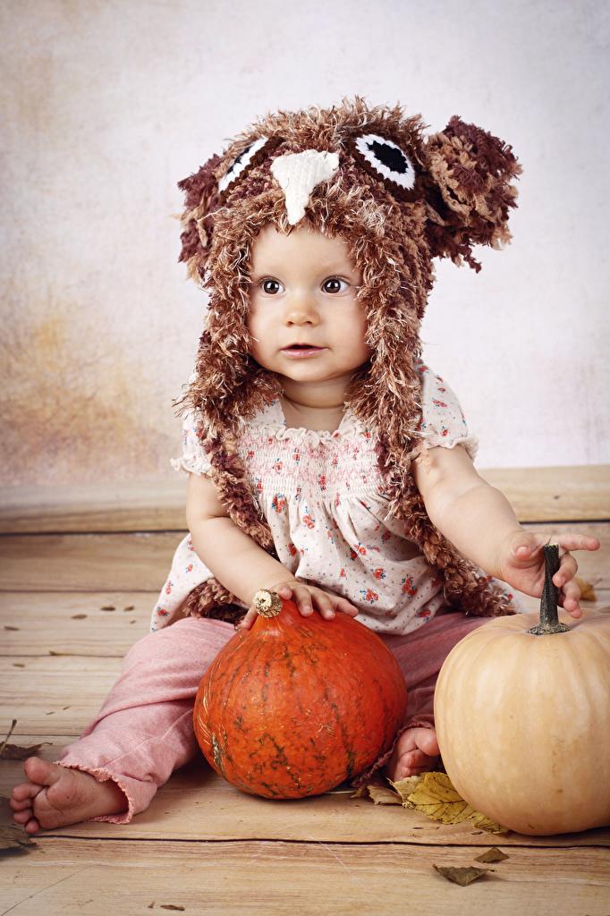 Фотографии девочка Дети шапка Тыква Сидит  для мобильного телефона Девочки ребёнок Шапки в шапке сидя сидящие