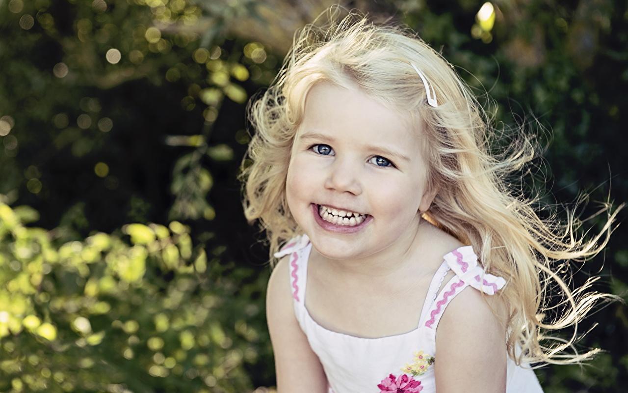Фотография девочка Блондинка Улыбка Дети Волосы смотрят Девочки блондинки блондинок улыбается ребёнок волос Взгляд смотрит
