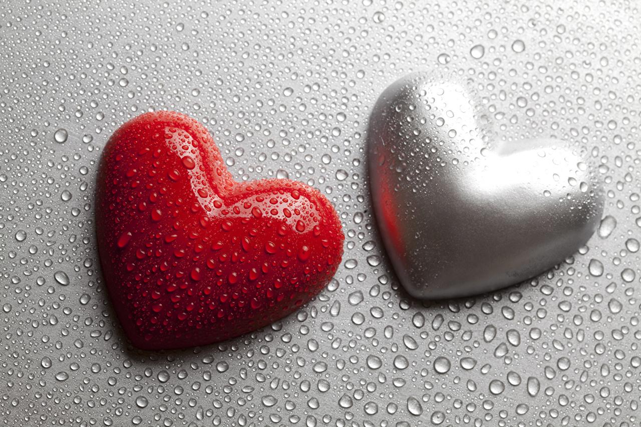 Фото День святого Валентина сердечко вдвоем Капли Серый фон День всех влюблённых серце сердца Сердце 2 два две Двое капля капель капельки сером фоне
