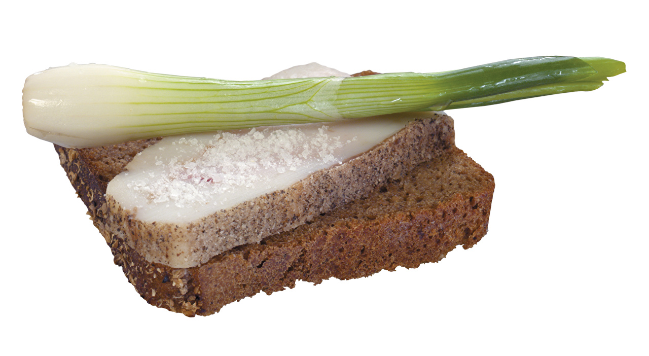 Фото Зелёный лук салом Хлеб Бутерброды Еда Белый фон Сало бутерброд Пища Продукты питания белом фоне белым фоном