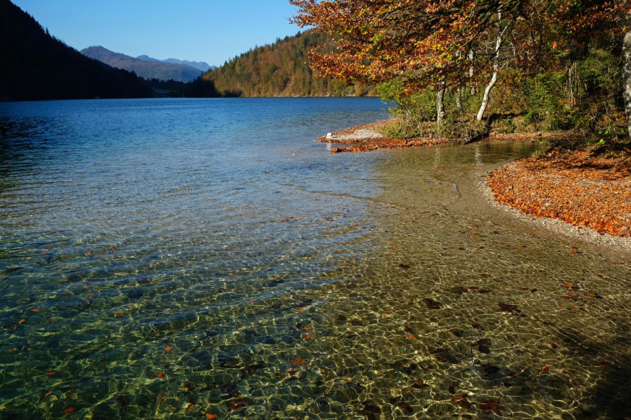 Фото Германия Konigsee lake Природа осенние Озеро Побережье Осень берег