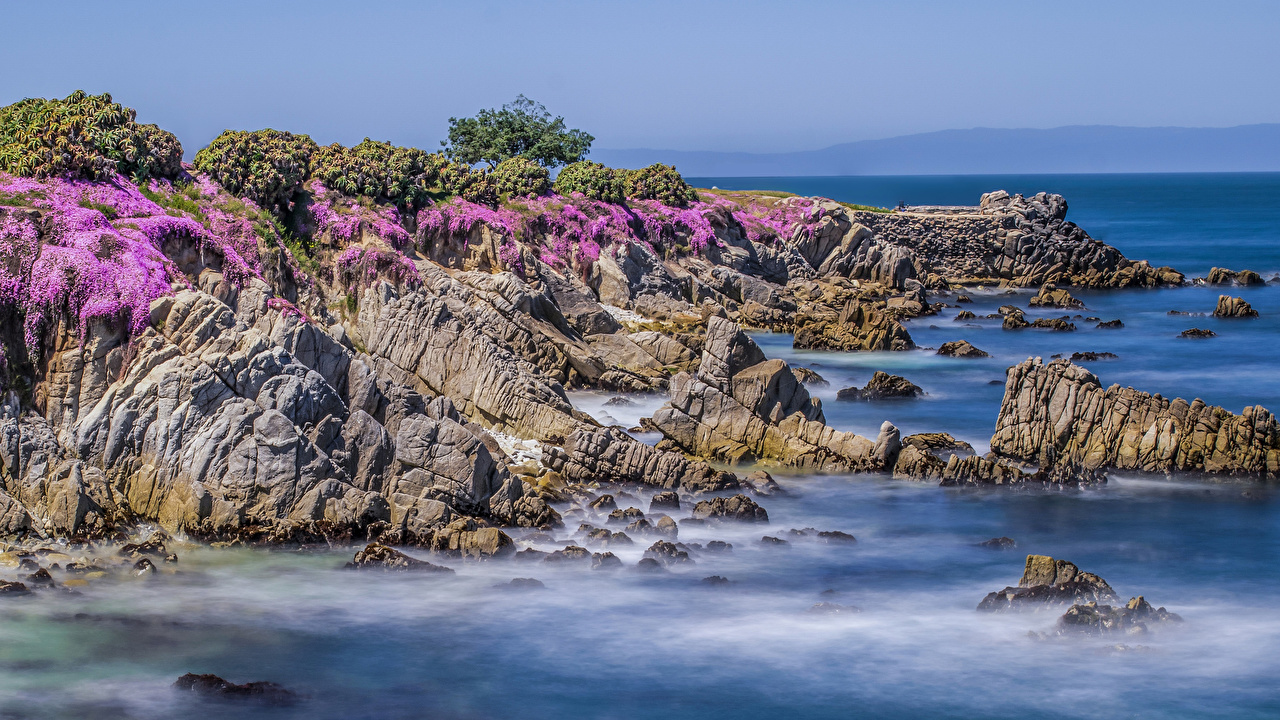 Фото Калифорния штаты Утес Природа берег калифорнии США скалы скале Скала Побережье