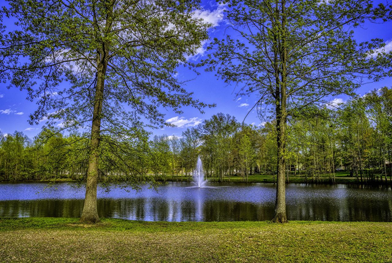 Фотографии США Фонтаны New Jersey Природа Озеро Парки Деревья штаты америка парк дерево дерева деревьев