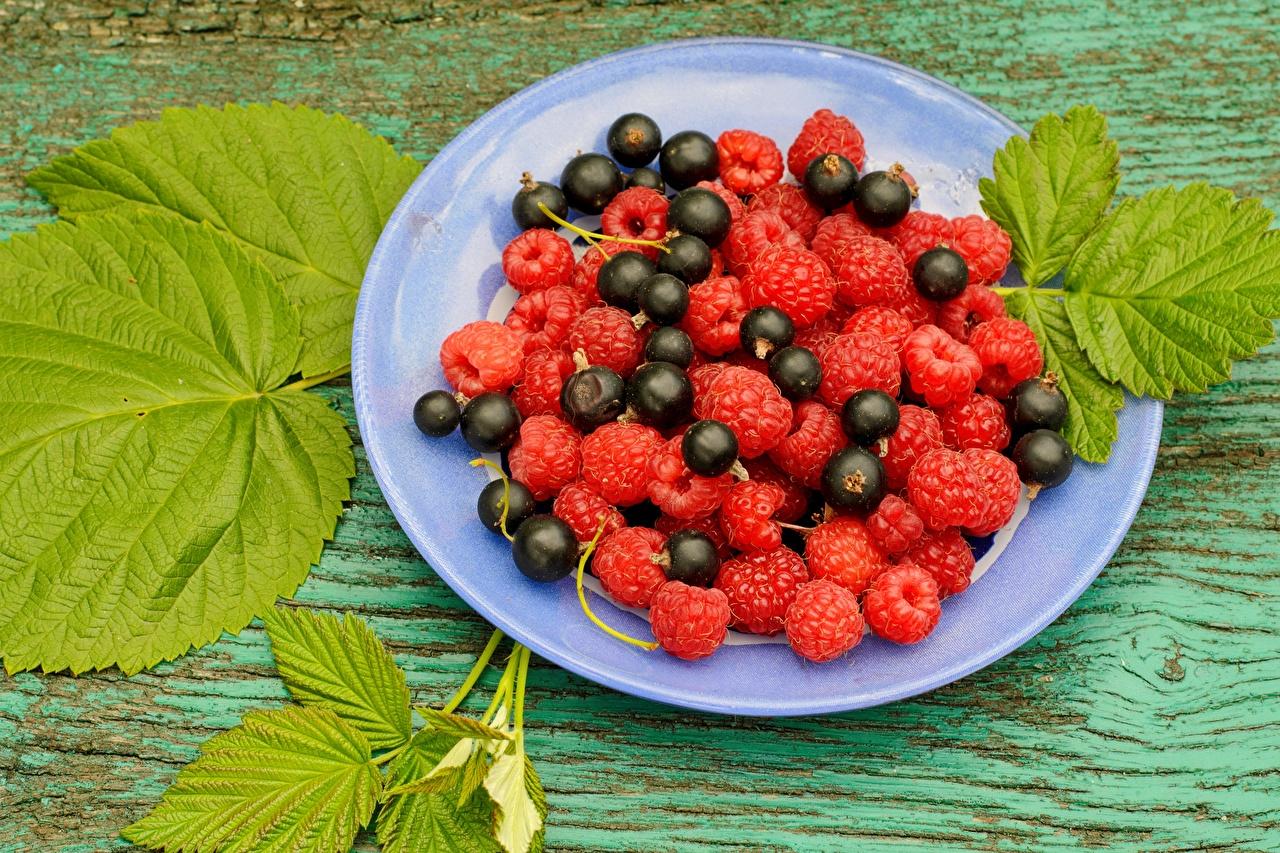 Фото Малина Смородина Еда Ягоды тарелке Пища Тарелка Продукты питания