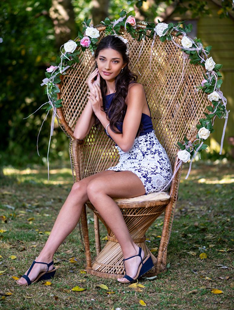 Фото фотомодель Elle девушка ног Сидит Кресло Взгляд  для мобильного телефона Модель Девушки молодая женщина молодые женщины Ноги сидя сидящие смотрит смотрят