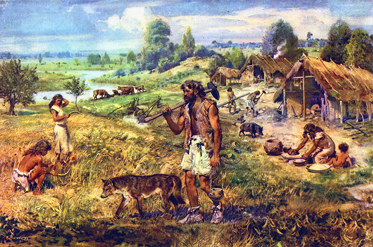 an evaluation of the changes during the transition from paleolithic to neolithic lifestyle