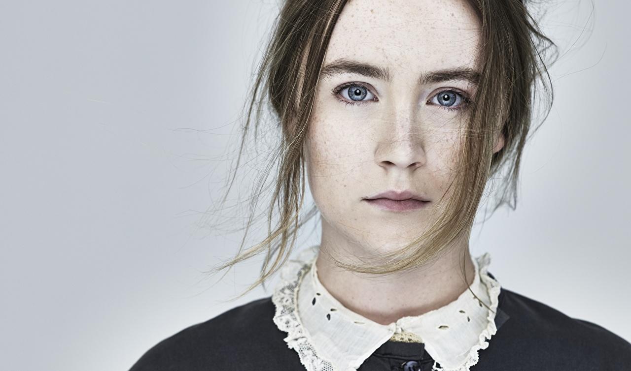 Фотография Saoirse Ronan лица девушка Взгляд сером фоне Знаменитости Сирша Ронан Лицо Девушки молодые женщины молодая женщина смотрит смотрят Серый фон